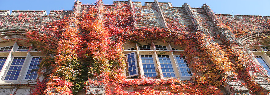 Lawson Hall with fall  leaves