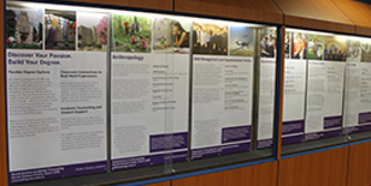 Posters for Undergraduate Programs offered by the Faculty of Social Science at Western University